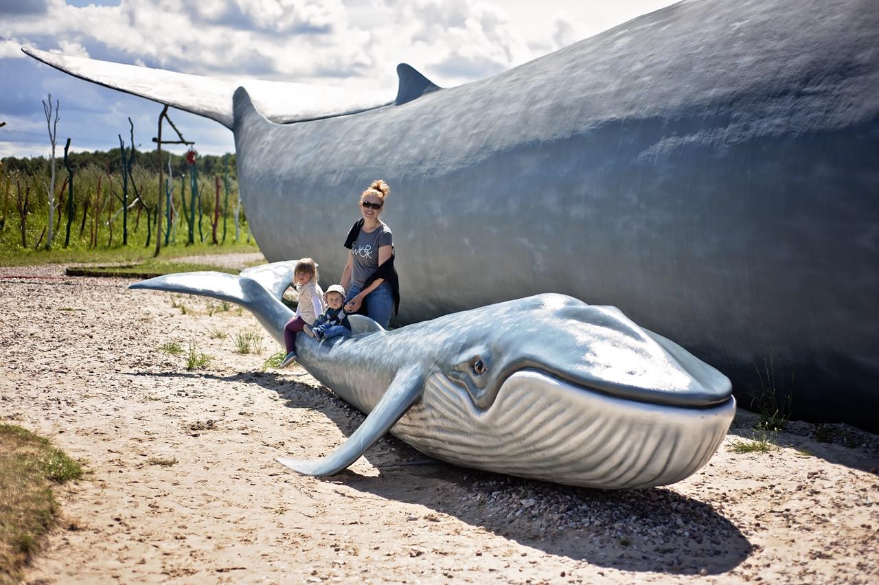 Park wieloryba Rewal