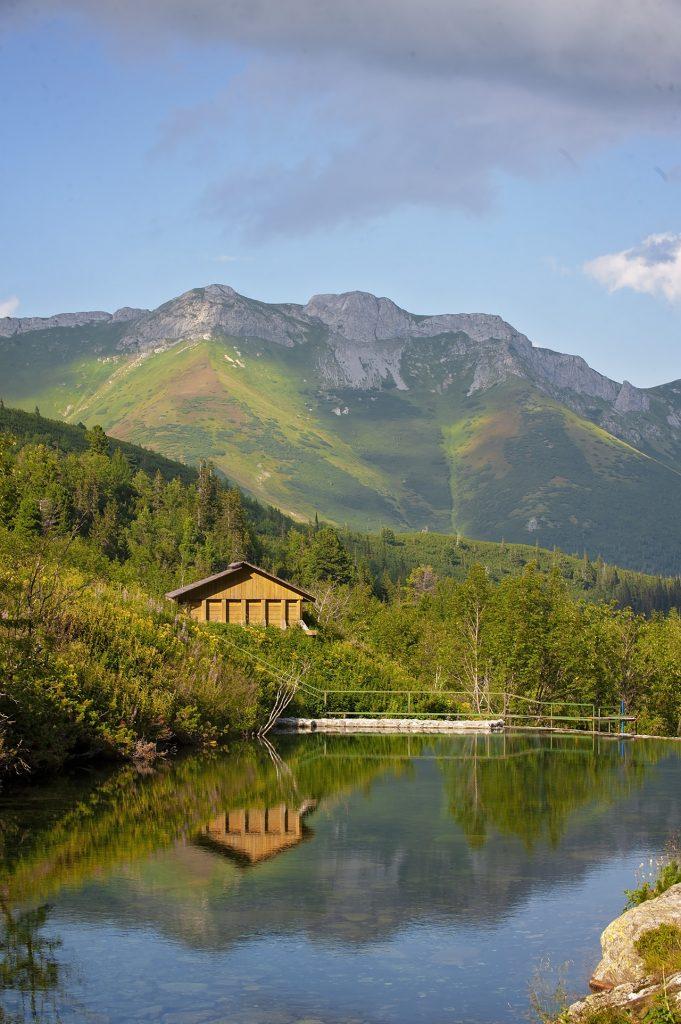 zielony staw Słowacja